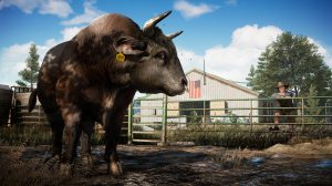 PS 4 Far Cry 5 PS 4